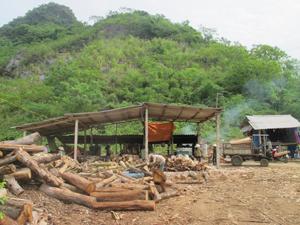 Huyện Yên Thủy đang nỗ lực giảm tác động xấu tới môi trường từ các cơ sở SX -KD trên địa bàn. ảnh: Cơ sở sản xuất ván ép ánh Thủy, xã Yên Lạc được đặt ở vị trí biệt lập với KDC.