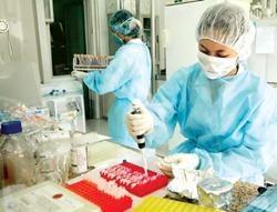 Tiến hành xét nghiệm mẫu bệnh phẩm bệnh nhân cúm.