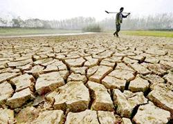 Ruộng đồng ở tỉnh An Huy (Trung Quốc) bị hạn hán nặng nề.