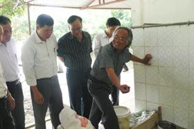 Ông Nguyễn Gia Tôn, Chủ nhiệm HTX Phương Liệt, xã Cao Dương (Lương Sơn) giới thiệu mô hình nuôi ba ba thương phẩm.