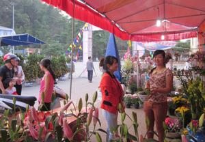 Gian hàng hoa của Trung tâm nghiên cứu ứng dụng KHCN tỉnh thu hút khách thăm quan, mua sắm tại Hội hoa Xuân.