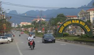 Đường Trần Hưng Đạo (TPHB) rực rỡ trong dịp Tết.