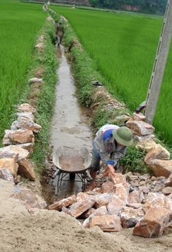 Trên diện tích trà lúa xuân chính vụ, nông dân xã Tòng Đậu (Mai Châu) tích cực nạo vét, tu sửa hệ thống kênh mương, đảm bảo cung ứng đủ nước cho sản xuất.