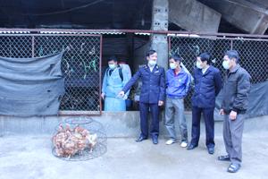 Đoàn kiểm tra, giám sát nhắc nhở hộ kinh doanh gia cầm xã Thống Nhất (thành phố Hòa Bình) tuân thủ áp dụng các biện pháp phòng dịch