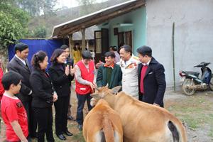 Đồng chí Hoàng Thị Chiển, UVBTV, Trưởng Ban Dân vận Tỉnh ủy cùng lãnh đạo T.Ư Hội CTĐ Việt Nam, Hội Chữ thập đỏ tỉnh và huyện Đà Bắc tại lễ trao nhà và bò giống cho gia đình ông Toán.