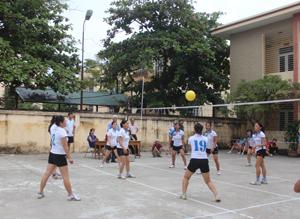 Hàng năm, phường Tân Thịnh đều tổ chức được giải bóng chuyền đầu xuân Ảnh: giải bóng chuyền đầu năm 2014.