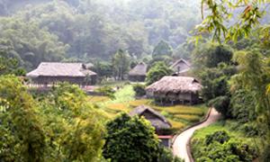 Bản Mường Giang Mỗ, xã Bình Thanh (Cao Phong) thu hút du khách bởi cảnh sắc tươi đẹp, lưu giữ nét văn hoá truyền thống