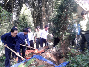 Các đồng chí lãnh đạo tỉnh trồng cây tại Đền thờ Chủ tịch Hồ Chí Minh tại núi Ba Vì, huyện Ba Vì (Hà Nội).