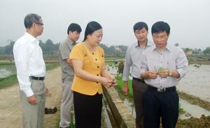 Kiểm tra sản xuất tại Yên Thủy, Lạc Sơn và Kim Bôi