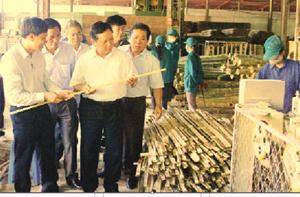 Đồng chí Bùi Văn Tỉnh, ủy viên BCH Trung ương Đảng, Bí thư Tỉnh ủy, Chủ tịch HĐND tỉnh thị sát tiến độ đầu tư và hoạt động sản xuất - kinh doanh của Công ty CP BWG Mai Châu tại cụm công nghiệp Chiềng Châu (Mai Châu). ảnh:P.V