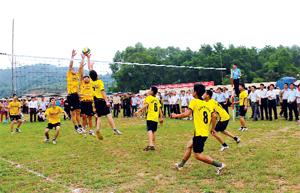 Môn bóng chuyền  luôn thu hút được đông đảo mọi người tham gia.