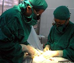 Các BS đang tiến hành phẫu thuật cho bệnh nhân bị ung thư thanh quản tại TPHCM.