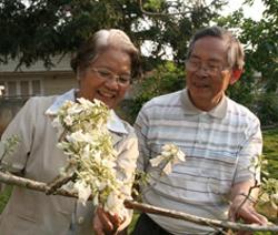 Vợ chồng TS Mai bên chùm phượng trắng độc nhất vô nhị.