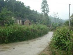 Cảnh vắng lặng thường thấy ở xóm 2 Bồng Giang xã Đức Giang