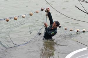 Tấm lưới bắt cụ Rùa hôm 8/3 được cho là không đảm bảo chất lượng.