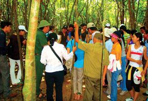Khu di tích lịch sử địa đạo Củ Chi là một trong những địa điểm giáo dục truyền thống sinh động nhất với các bạn trẻ.