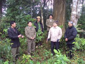 Hội CCB xã Ngổ Luông (Tân Lạc) đóng góp tích cực vào công tác QL&BVR ở địa phương.