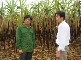Anh Bùi Văn Năng (ảnh trái) - giải thưởng Lương Đình Của năm 2010, trao đổi kinh nghiệm phát triển kinh tế gia đình cho cán bộ đoàn xã Vĩnh Tiến - Kim Bôi.