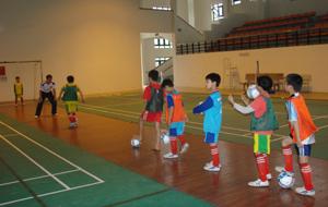 Đội tuyển bóng đá nam tiểu học đã đoạt giải ba tại HKPĐ toàn quốc khu vực I và lọt vào vòng chung kết toàn quốc năm 2012.
