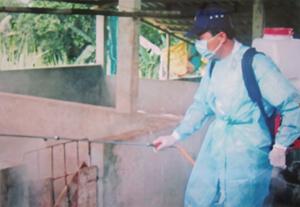 Thú y viên xã Dũng Phong (Cao Phong) tiêu độc, khử trùng chuồng trại có lợn mắc E.coli.