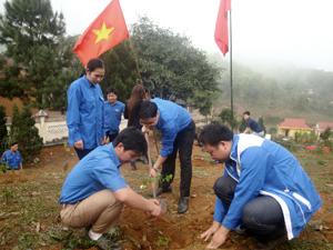 Hưởng ứng tháng thanh niên, đại diện lãnh đạo Tỉnh đoàn cùng ĐVTN trồng cây tại chùa Khánh.