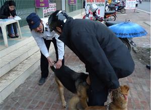 Thành phố Hòa Bình là một trong số những địa phương triển khai sớm việc tiêm phòng bệnh dại cho đàn chó.