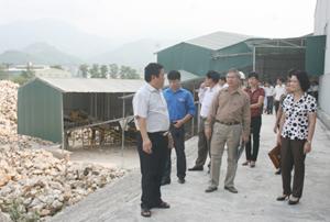 Ban chỉ đạo Tuần lễ quốc gia ATVSLĐ – PCCN tỉnh, huyện Kỳ Sơn kiểm tra công tác bảo hộ lao động tại Công ty TNHH Khải Hưng (xã Mông Hóa - Kỳ Sơn).
