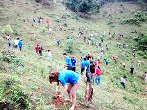 ĐVTN xã Nhuận Trạch tham gia trồng cây phủ xanh đất trống, góp phần bảo vệ môi trường sống.