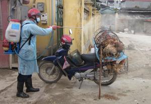 Tăng cường kiểm soát, tiêu độc – khử trùng tại chỗ đối với gia cầm trước khi đưa vào buôn bán tại điểm chợ Lồ, xã Phong Phú (Lân Lạc).