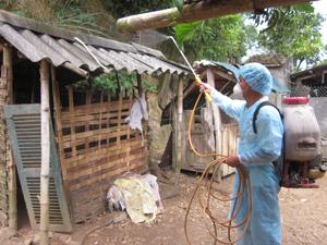 Hộ dân xóm Hạnh Phúc, xã Hòa Sơn (Lương Sơn) thực hiện các biện pháp phòng dịch bệnh tổng hợp cho đàn gia cầm.