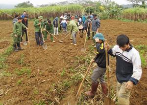 ĐV-TN tham gia đào rạch mía giúp gia đình chính sách tại xã Bắc Phong.