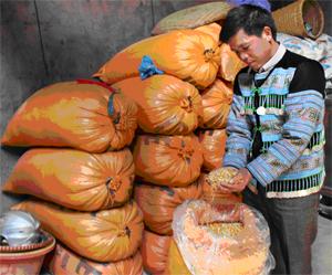 Anh Sùng A Chìa tích trữ, bảo quản ngô hạt chờ đến ra giêng bán được giá cao hơn.