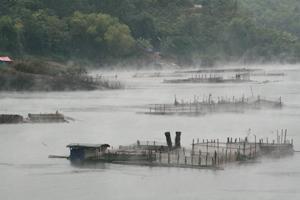 Trong những năm qua, nhiều thời điểm mực nước hồ Hòa Bình xuống thấp, ảnh hưởng đến phát điện và gây khó khăn trong phục vụ tưới tiêu khu vực hạ du sông Đà.
