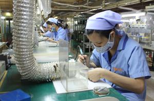 Công ty TNHH Sanko Việt Nam, phường Hữu Nghị (TP Hòa Bình)  100% vốn đầu tư Nhật Bản là một trong những  đơn vị thực hiện tốt công tác ATVSLĐ.