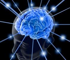 """Trong não phải của con người tồn tại một """"nam châm đạo đức""""."""