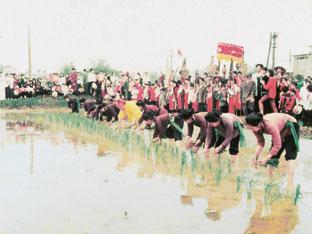 Tái hiện nghi thức cấy lúa trong lễ Tịch Điền ở xã Minh Nông (Phú Thọ).