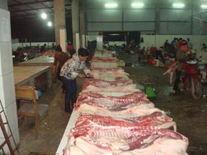 Hiện nay, thành phố Hòa Bình mới đưa được 70% hộ giết mổ gia súc nhỏ lẻ vào lò giết mổ tập trung đảm bảo điều kiện về vệ sinh thú y và VSATTP.