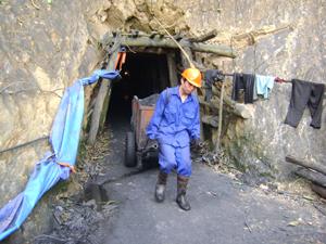 Trong khi làm việc tại Công ty TNHH Phương Bắc, người lao động vẫn chưa thực hiện nghiêm túc quy định về bảo hộ lao động.
