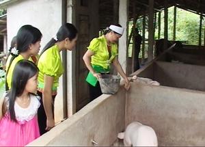 Thực hiện 6 nhiệm vụ trọng tâm, hội viên Hội phụ nữ xã Quyết Chiến (Tân Lạc) tập trung phát triển kinh tế hộ gia đình.