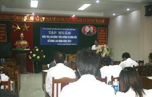 Tập huấn điều tra lao động tiền lương và nhu cầu lao động năm 2013.