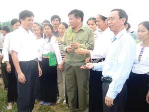 Đồng chí Hoàng Việt Cường, Bí thư Tỉnh ủy cùng lãnh đạo Hội Nông dân tỉnh thăm vựa lúa Tân Lập (Lạc Sơn). Ảnh: T.L