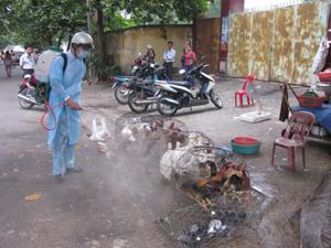 Thành phố Hòa Bình tổ chức phun tiêu độc khử trùng tại các điểm kinh doanh, giết mổ gia cầm để phòng cúm A/H5N1, H1N1 (Ảnh chụp tại chợ Phương Lâm).