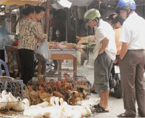 Người dân nên lựa chọn thịt gia súc, gia cầm có dấu kiểm dịch và nấu chín, không ăn tái.
