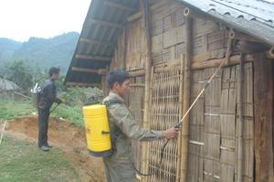 Khu vực trú ẩn của muỗi mang KST sốt rét được phun thuốc diệt trừ (Ảnh tại xóm Cáp, xã Bình Thanh – Cao Phong).