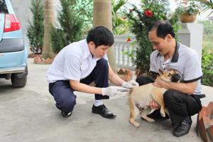 Các chủ nuôi trên địa bàn phường Tân Thịnh (TPHB) chấp hành tiêm vắcxin phòng dại đợt 1/2014 cho chó, mèo.