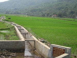 Quy trình CDF các bước công trình mương xã Hạ Bì (Kim Bôi), người dân tham gia đóng góp quá trình lập kế hoạch, được bàn giám sát chất lượng công trình.