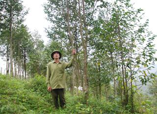 Ông Bùi Văn Sượn xã Yên Lập ( Cao Phong) bên vườn dó trầm.