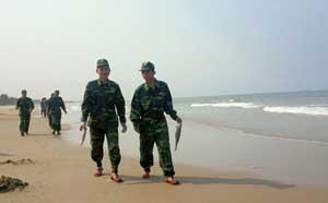 Chiều 25/4, đơn vị bộ đội địa phương được huy động đi thu gom cá mới chết dạt vào bãi biển thôn Đá Nhảy, xã Thanh Trạch.