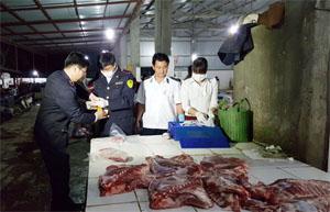 Đoàn kiểm tra lấy mẫu thịt lợn để kiểm tra chất cấm tại lò giết mổ tập trung của Doanh nghiệp tư nhân Ngọc Hà, xã Sủ Ngòi, TPHB.