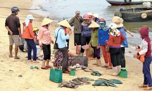 Cá chết dạt bờ biển, nhiều thương lái đã tổ chức thu mua.